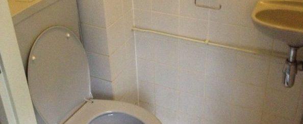Toilet vervangen en betegeld 2 foto 1