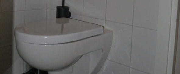 Toilet vervangen en betegeld 7 foto 1
