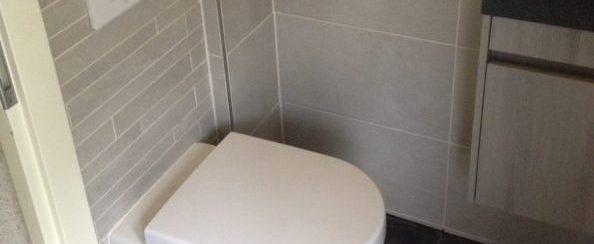 Toilet vervangen en betegeld 2 foto 3